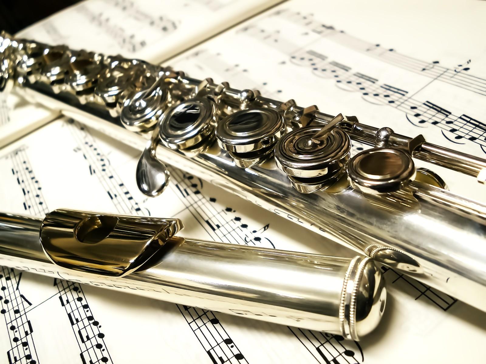 【カラオケ】ギターはいいけど金管楽器だけはマジでやめてくれ